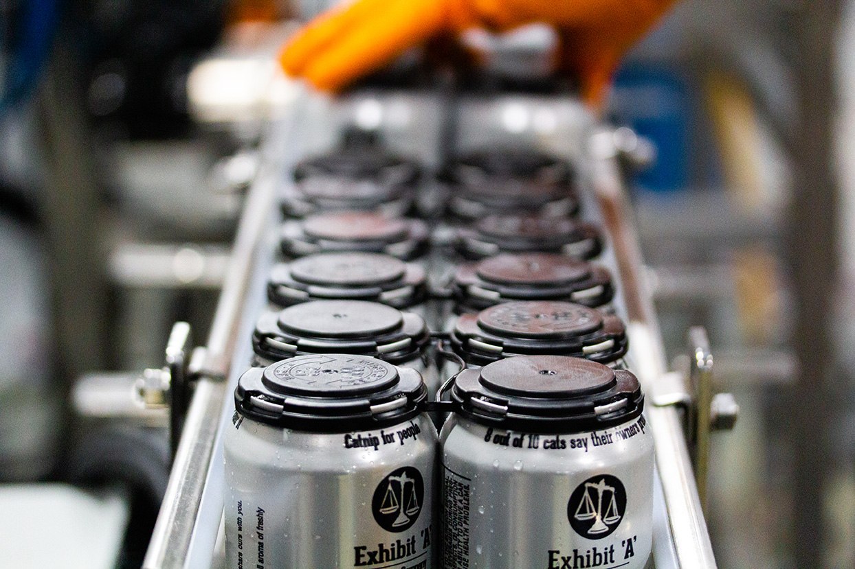 The Cat's Meow IPA on our canning line