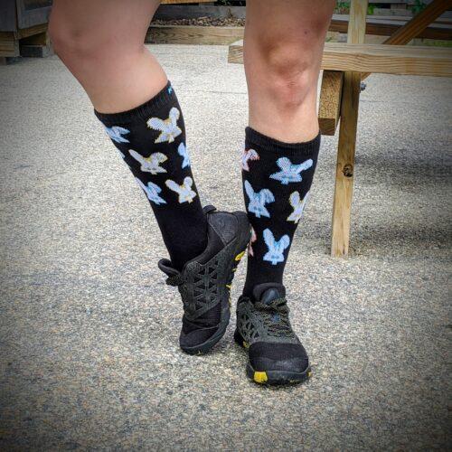 Photo displaying the socks